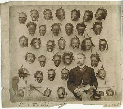 A nineteenth-century collection of preserved Maori heads that went on to form part of the Wellcome Collection
